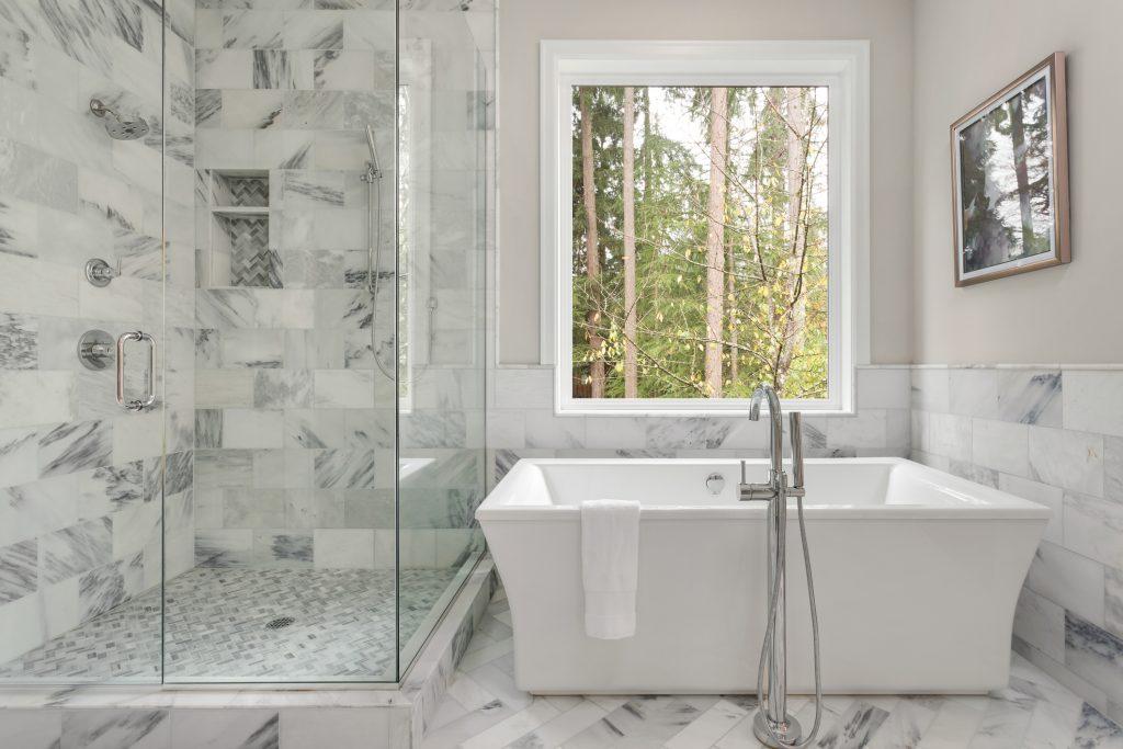 Master bathroom shower and bathtub